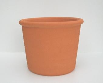 Ref J22 Vaso direito 1